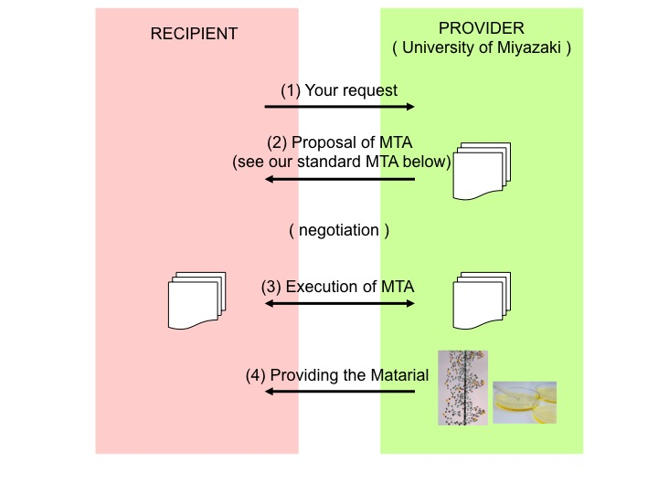 University Of Miyazaki Material Transfer Agreement